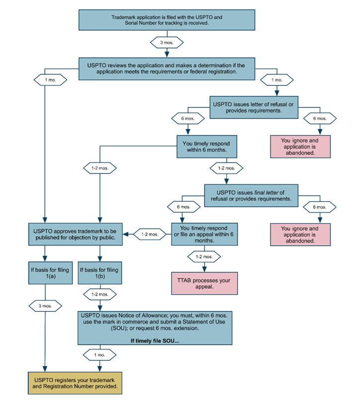 An image of a flowchart that outlines how long the United States Trademark Registration can take.